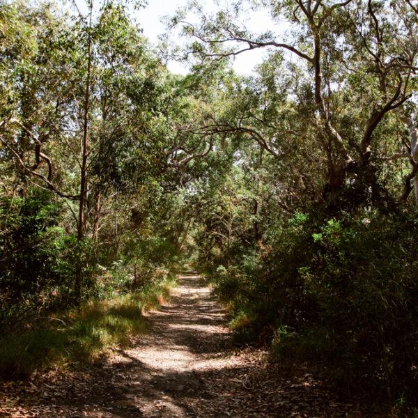 Day Trip: Kamay Botany Bay National Park